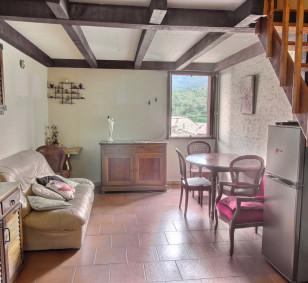 T3 dans le village de Bastelica Corse du Sud photo #3472