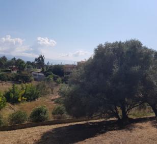 Vente terrain à bâtir de 1 787 m2 - Ajaccio, Rocade photo #2666